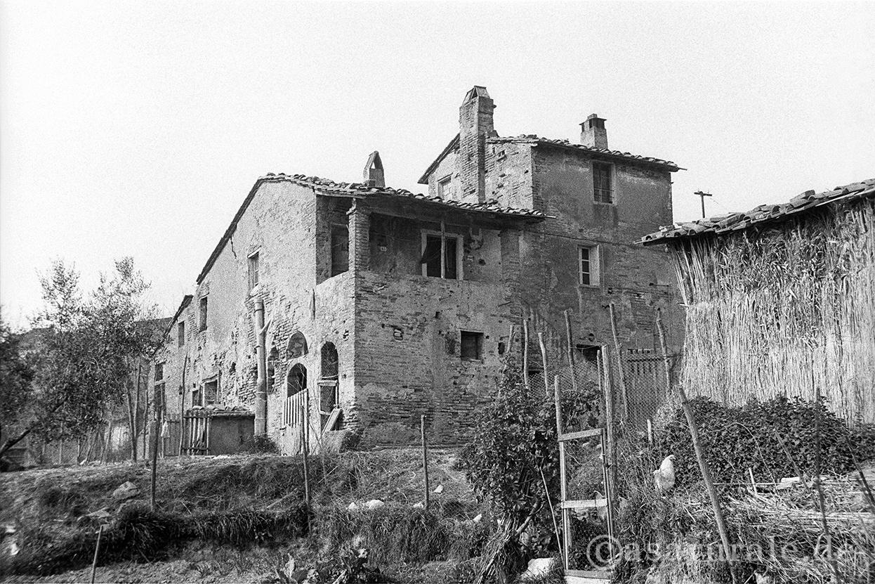 Case rurali in toscana catalogo la casetta for Disegni casa colonica